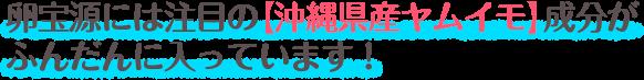 卵宝源には注目の沖縄県産ヤムイモ成分がふんだんに入っています!